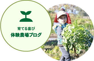 育てる喜び 体験農場ブログ