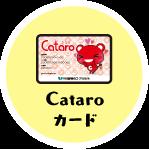 Cataroカード